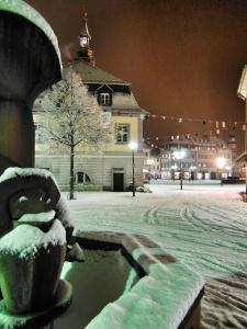 Winterstimmung in Emmendingen (Foto: Ronja Vattes)