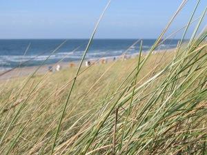 Sylt - der Strand bei Rantum