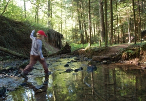 Von Stein zu Stein: auf dem Wasserpfad im Sulzbachtal