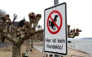 Unübersehbar - doch Hunde können nicht lesen.