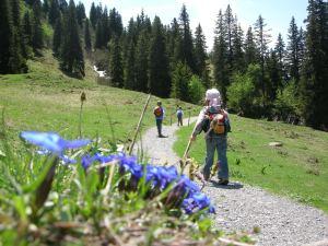 Zwerge in den Bergen: Immer langsam voran.