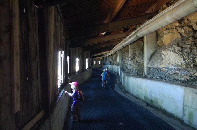 Abkürzung: Die Gipfelgalerie des Brienzer Rothorns verkürzt den Weg hinuter zum Eisee.