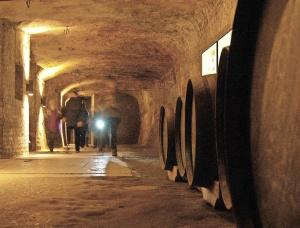 Labyrinth unter der Stadt: die historischen Felsengänge