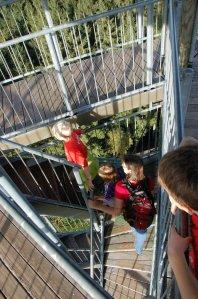 Nachgezählt: Genau 126 Stufen gilt es bis zur obersten Plattform des Hünersedelturms zu erklimmen.