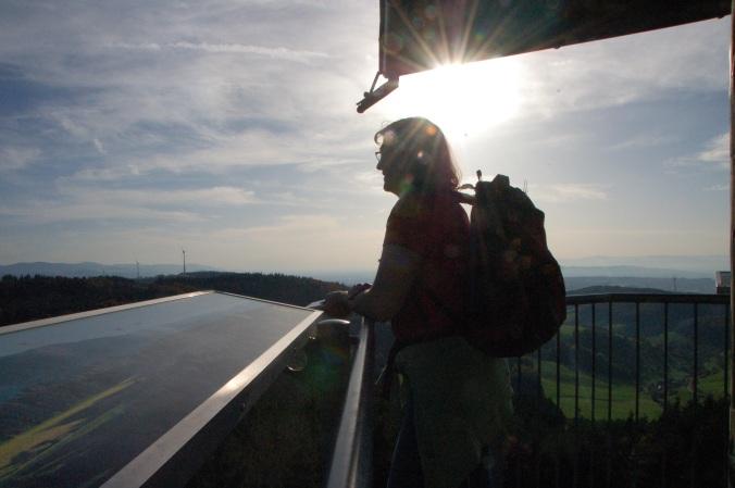 29 Meter über dem Erdboden schweift der Blick weit über den Breisgau.