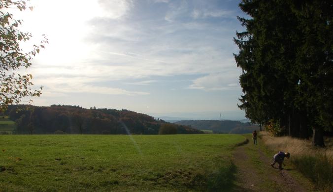 Von den Höhen des Kreises Emmendingen geht der Blick weit hinüber ins nahe Elsass.