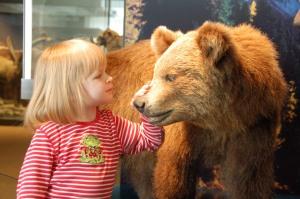 Beißt der wirklich nicht? Im Naturmuseum in Solothurn ist Anfassen ausdrücklich erlaubt. Fotos: Anselm Bußhoff