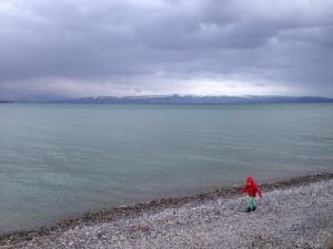 Bei Friedrichshafen am Bodensee - Bild: Ronja Vattes