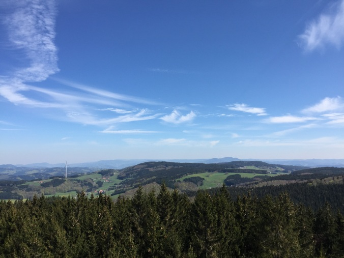 Blick Richtung Ortenau und Kinzigtal