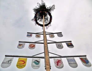 Der Maibaum in Emmendingen ...