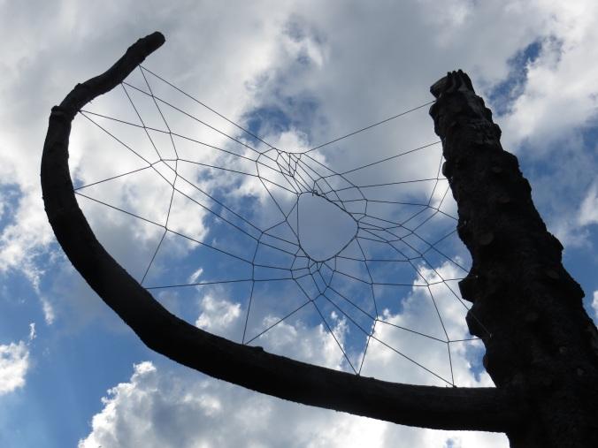 Von Menschenhand geknüpft: Riesiges Spinnennetz in Menschenschwand