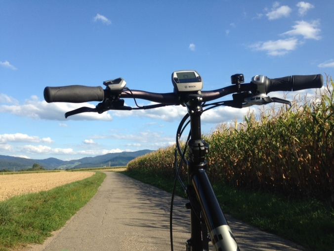 Statt rumzustehen im Stau, frische Luft und Bewegung: mit dem E-Rad zur Arbeit - Bild: Ronja Vattes