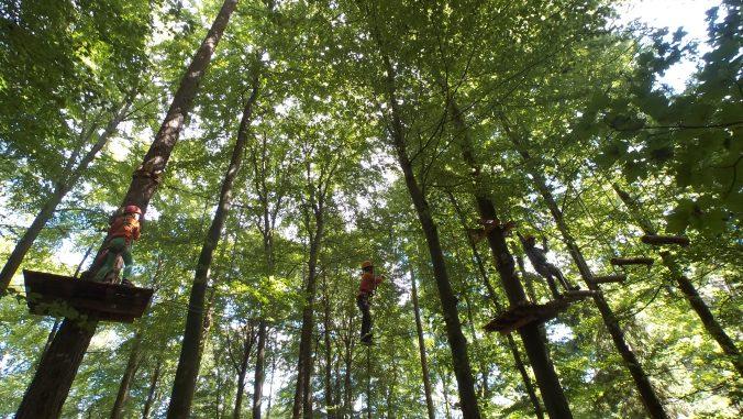 Wanken auf schwankenden Planken im Klettergarten bei Kenzingen - Bilder: Anselm Bußhoff