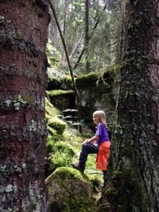 Können wir den Wald nicht mitnehmen? Bilder: Ronja Vattes