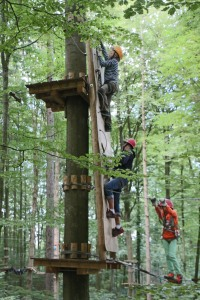 Gut gesichert - und dennoch abenteuerlich: Klettern in den Bäumen